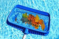 epuisette piscine
