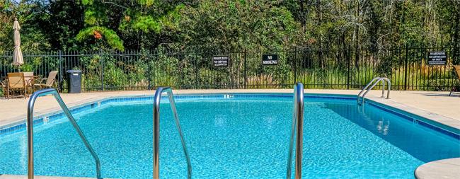 garde corps piscine fer forgé