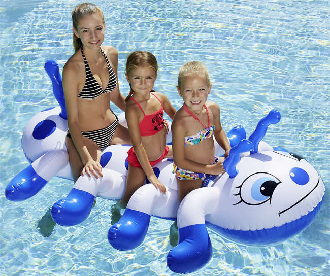 Chenille Gonflable Piscine